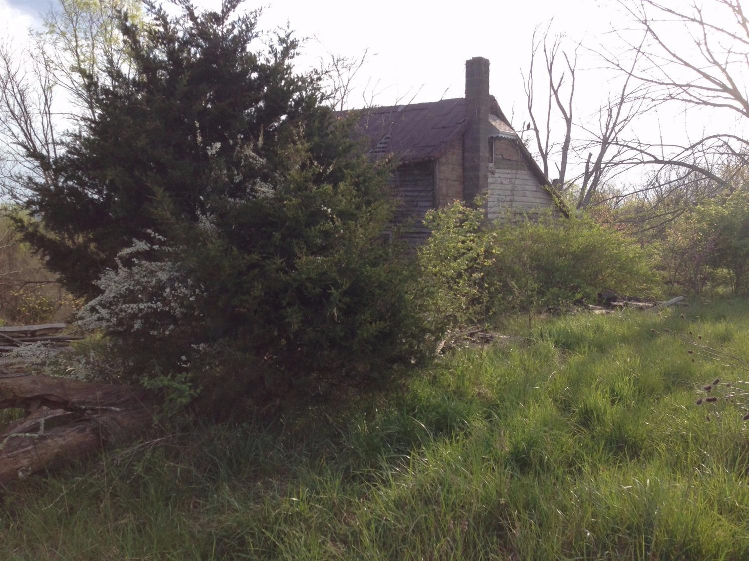 real estate photo 1 for KY 165 Mt Olivet, KY 41064