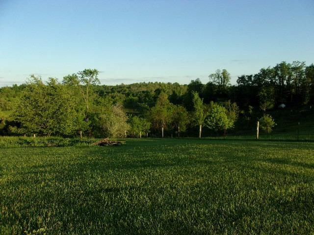 Photo 1 for 1383 Cook Ridge Rd Brooksville, KY 41004