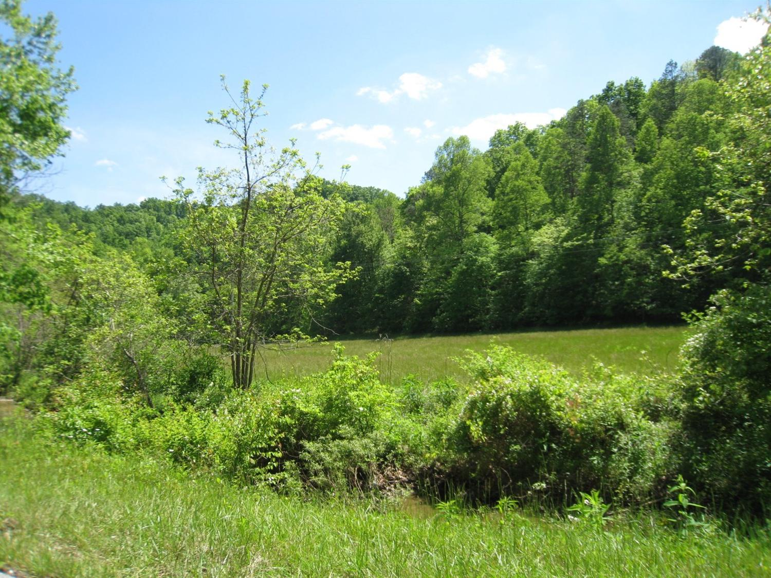 real estate photo 1 for White Oak Rd Booneville, KY 41314