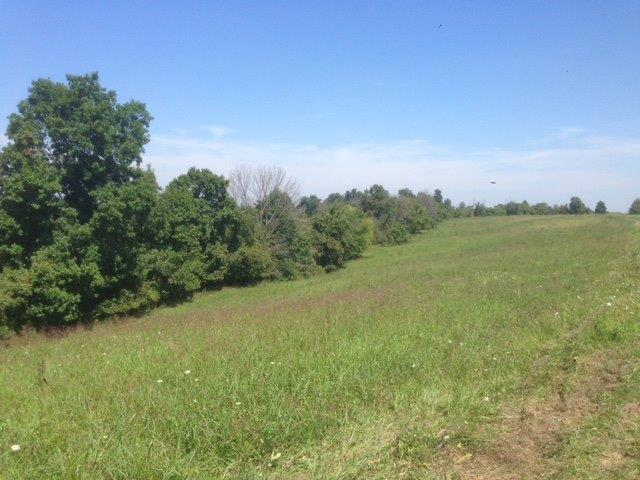 Photo 1 for A Peach Grove Rd California, KY 41007