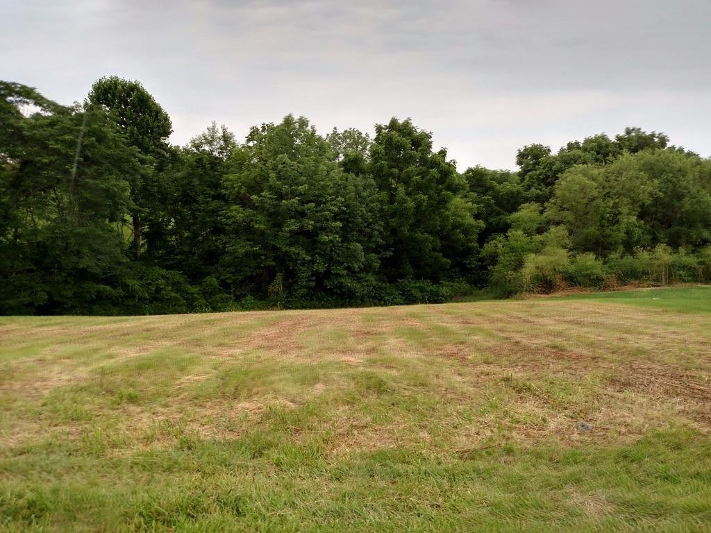 real estate photo 1 for Hogg Ridge Rd, lot 3 Williamstown, KY 41097