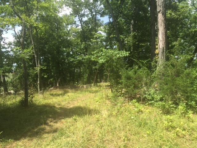 2.78 ac Clay Ridge Rd Grants Lick, KY