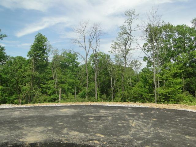 real estate photo 1 for Mel Lawn Dr, Lot 2 Fort Thomas, KY 41075
