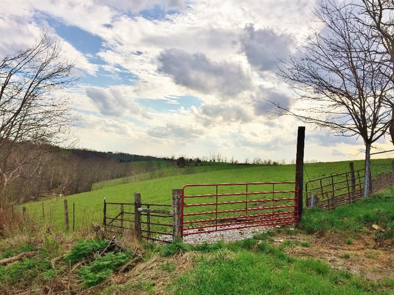 real estate photo 1 for 480 C Meeks Rd Dry Ridge, KY 41035