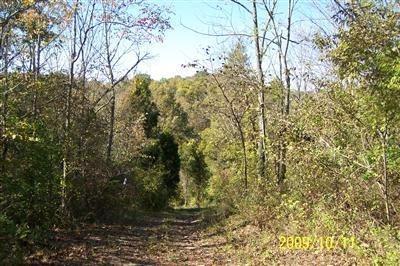 25 Timber Ridge