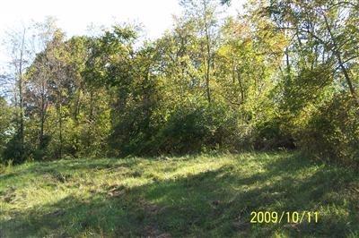 9 Timber Ridge