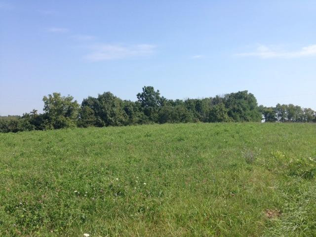 Photo 2 for 2 Cox Ln Brooksville, KY 41004