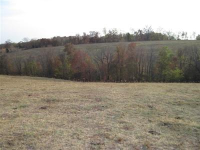 real estate photo 1 for 21ac Fairview Rd Williamstown, KY 41097