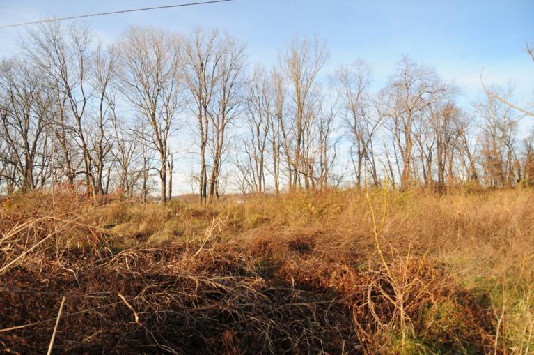 Meadowlark lots#11, 12 & 13