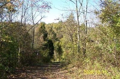 37 Timber Ridge