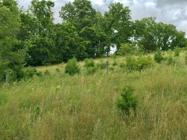 Photo 1 for 14779 Hwy US 42 Verona, KY 41092