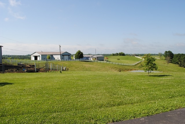 real estate photo 1 for 1990 Baton Rouge Rd. Williamstown, KY 41097
