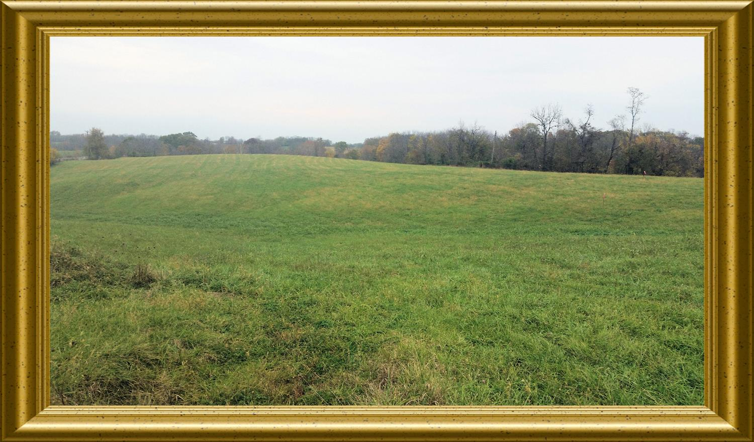 real estate photo 1 for KY HWY 14, Verona Mudlick Rd Verona, KY 41092