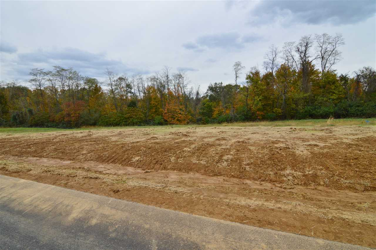 Photo 1 for 12020 Bentley Dr, Lot 3 Independence, KY 41051