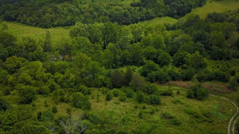 real estate photo 1 for Clarks Creek Rd Dry Ridge, KY 41035