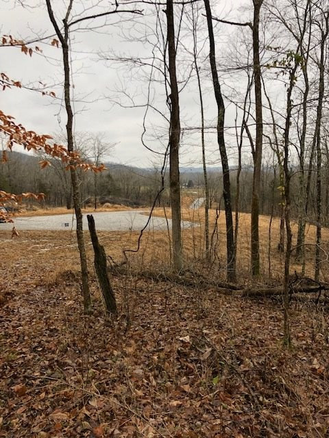real estate photo 2 for Moffett Rd Morning View, KY 41063