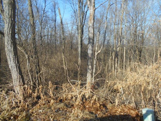 Photo 1 for Schweitzer Ct, Lot 8 Alexandria, KY 41001