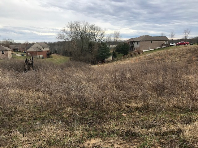 Photo 1 for Liza Ln, Lot 9 Crittenden, KY 41030