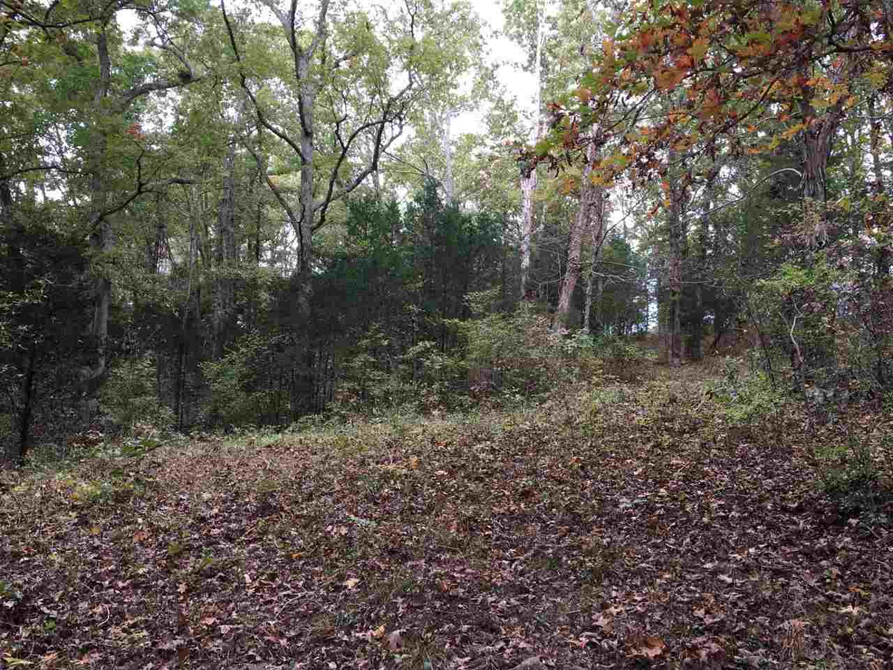9797 Alexandria Pike, Lot #
