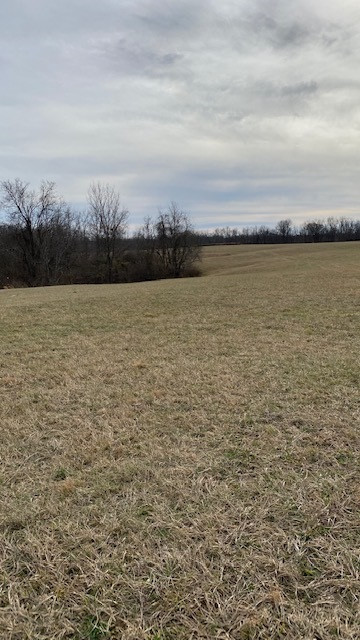 Photo 2 for Peaceful Hollow Rd Dry Ridge, KY 41035