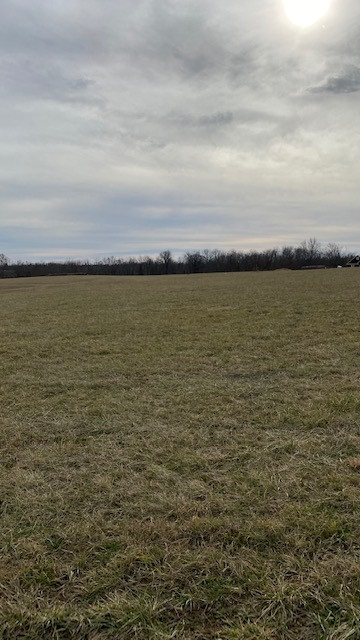 Photo 3 for Peaceful Hollow Rd Dry Ridge, KY 41035