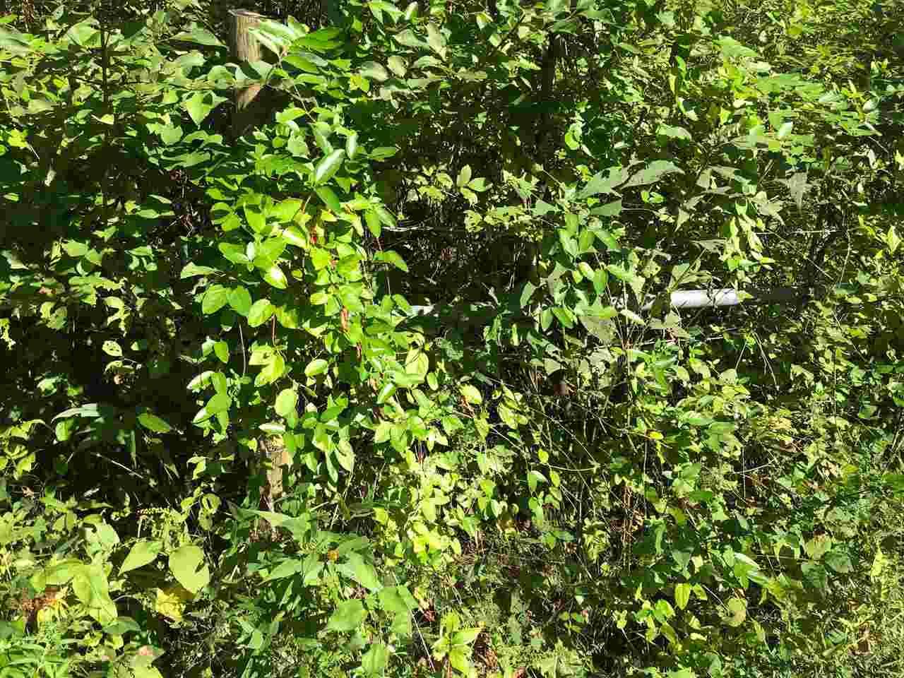Photo 3 for Brush Creek Jonesville, KY 41035