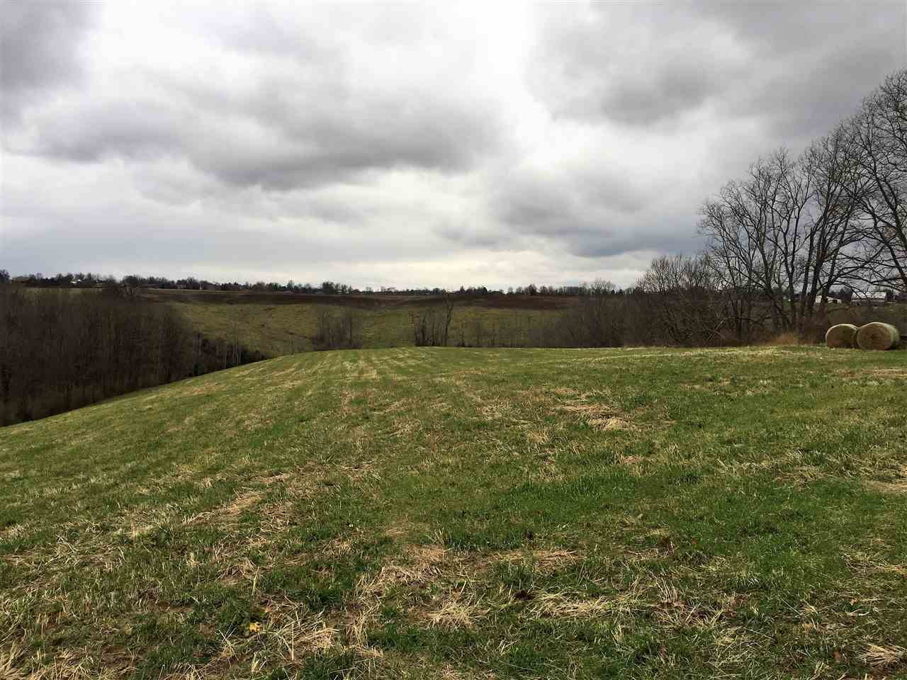 Photo 2 for 930 Curry Dry Ridge, KY 41035