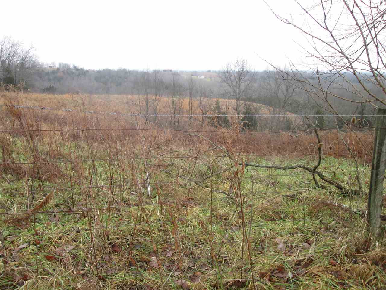 Photo 2 for 10000 Taft Hwy, Tract Williamstown, KY 41097