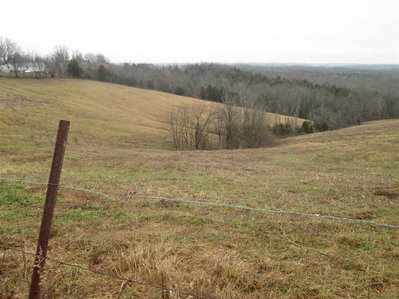 Photo 3 for 10000 Taft Hwy, Tract Williamstown, KY 41097