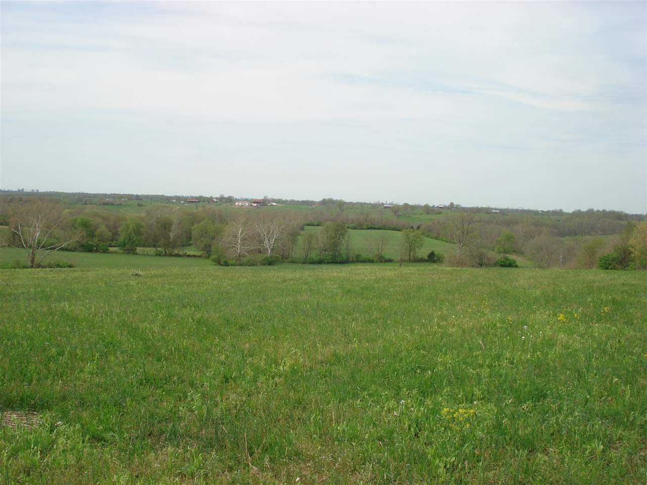 Photo 1 for 100 Millersburg-Cynthiana Rd Paris, KY 40361