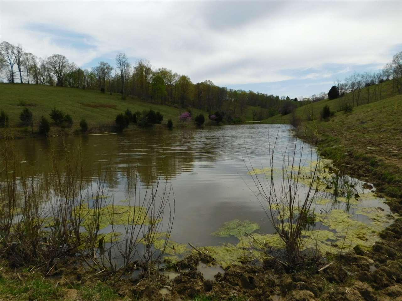 Photo 2 for Morgan Creek Rd Corinth, KY 41010