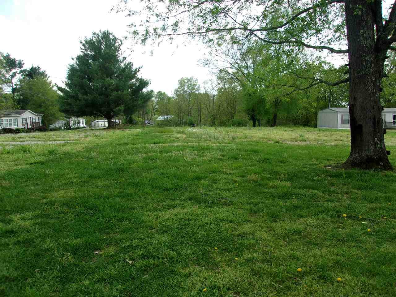 Photo 2 for 0 Woodland Acres Rd Brooksville, KY 41004