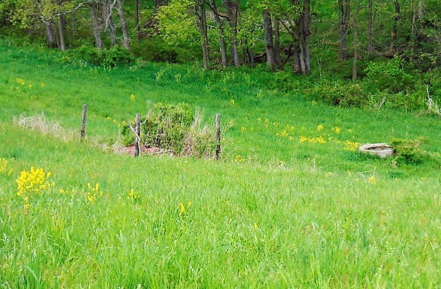 Photo 2 for Golds Valley Rd Dry Ridge, KY 41035