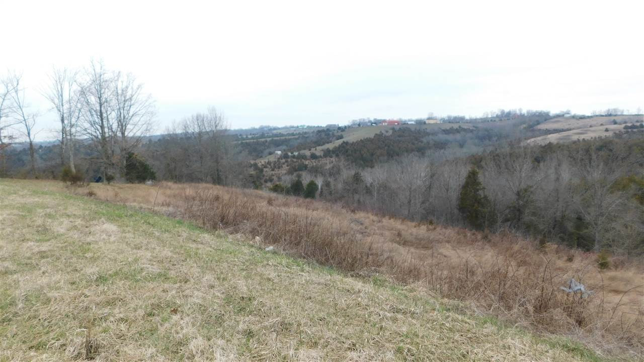 Photo 4 for Reed Kinman Rd Williamstown, KY 41097