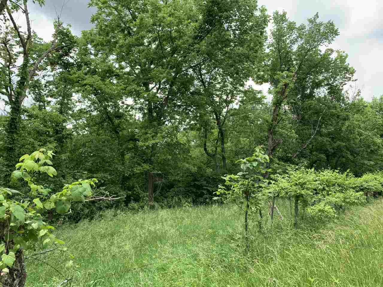 Photo 3 for Mattox Rd Brooksville, KY 41004