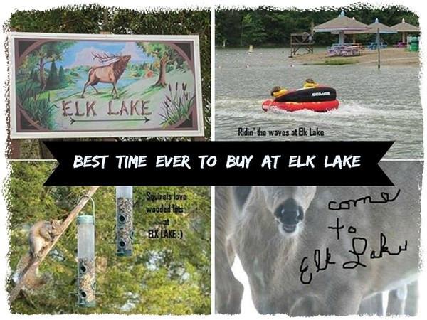 445 Elk Lake Resort , LOT 1295 Rd