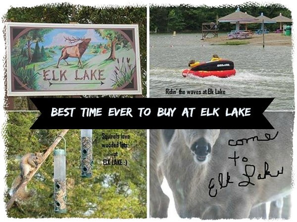 445 Elk Lake Resort , LOT 1369 Rd