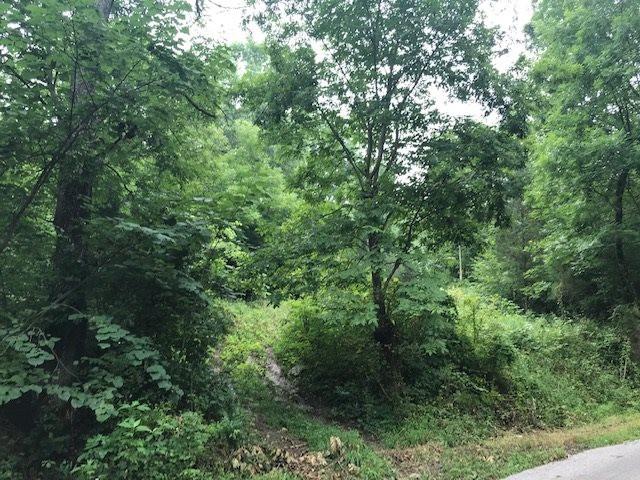 Photo 2 for Heathen Ridge Crittenden, KY 41030