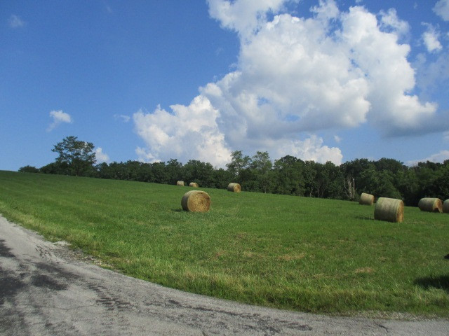 Photo 2 for W Kelly Rd Falmouth, KY 41040