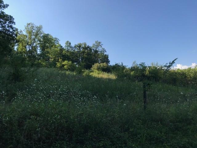 Photo 2 for Cedar Creek Mt Olivet, KY 41064