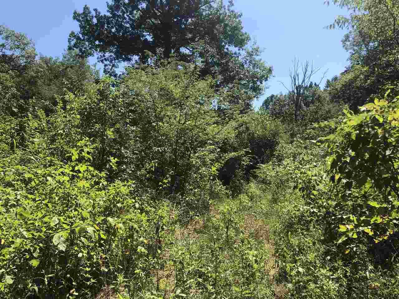 Photo 2 for Lead Mine Rd Owenton, KY 40359