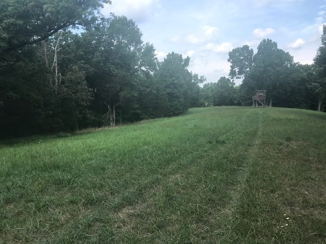 Photo 1 for 7 Kelly Rd Demossville, KY 41033
