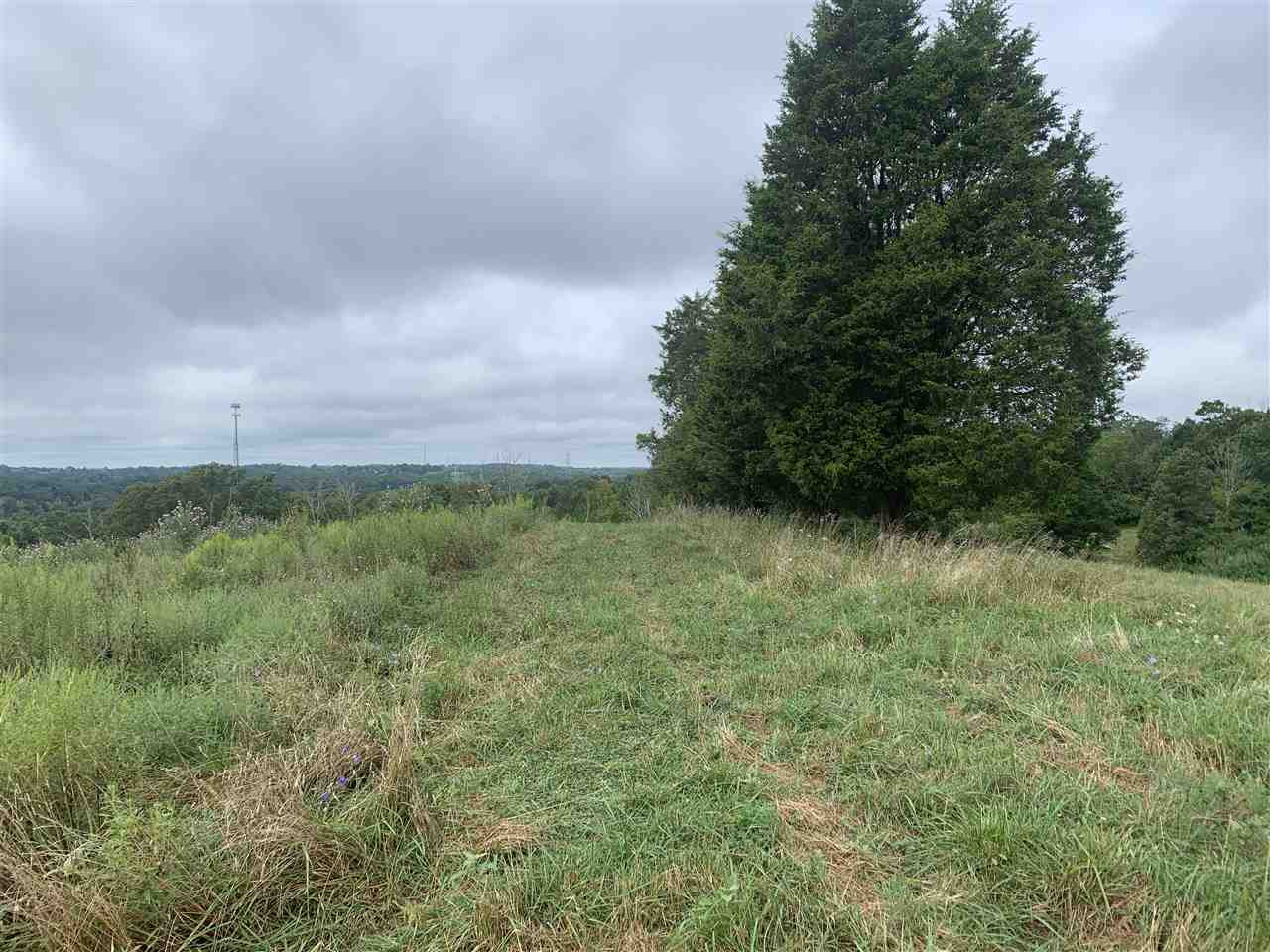 Photo 2 for 9550 Jerry Wright Rd Alexandria, KY 41001