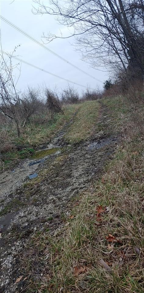 Photo 1 for 260 Dark Region Williamstown, KY 41097