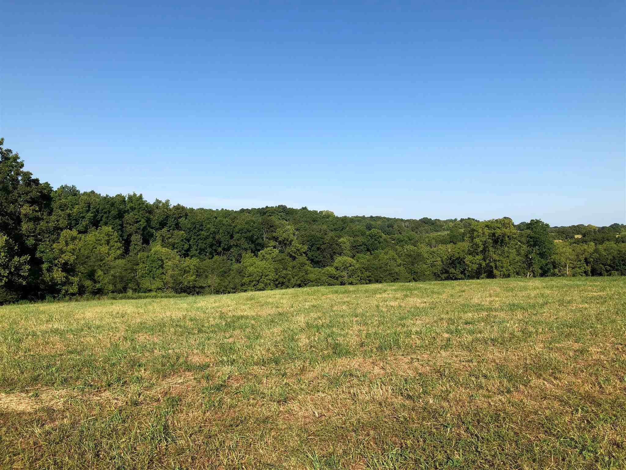 Photo 2 for 8A Junction Farms Cynthiana, KY 41031