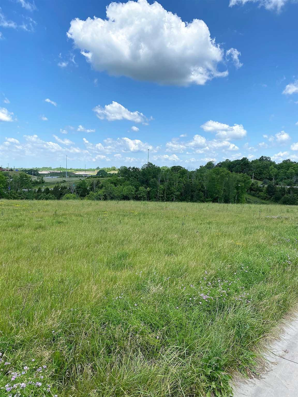 Photo 3 for Lot 2 Noah's Way Williamstown, KY 41097