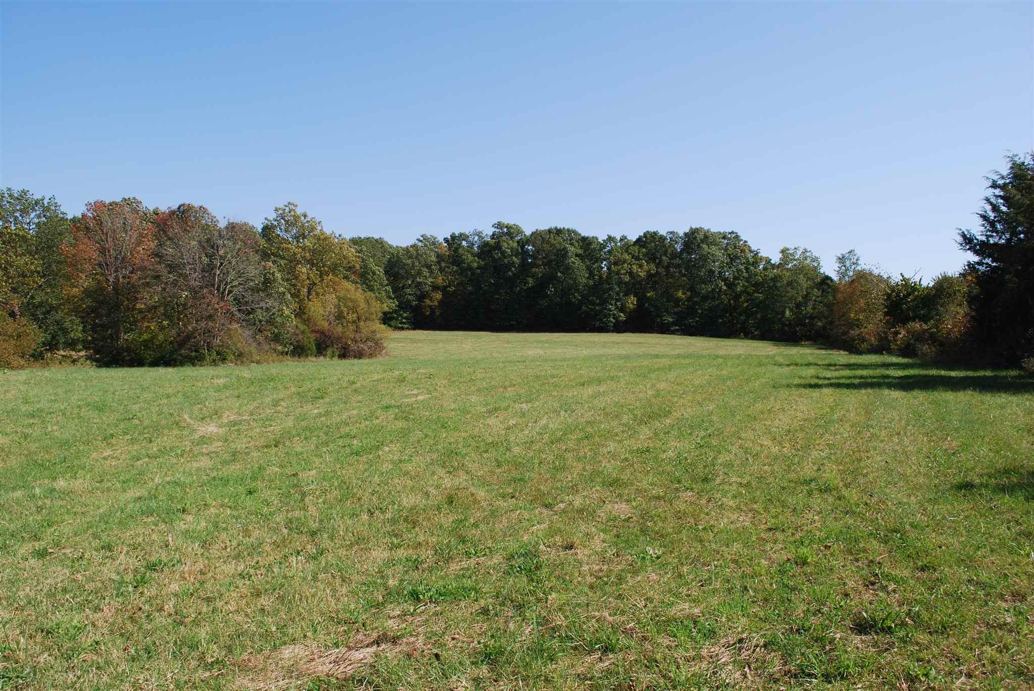 103+/- Acres Chalk Ridge Road Vanceburg, KY