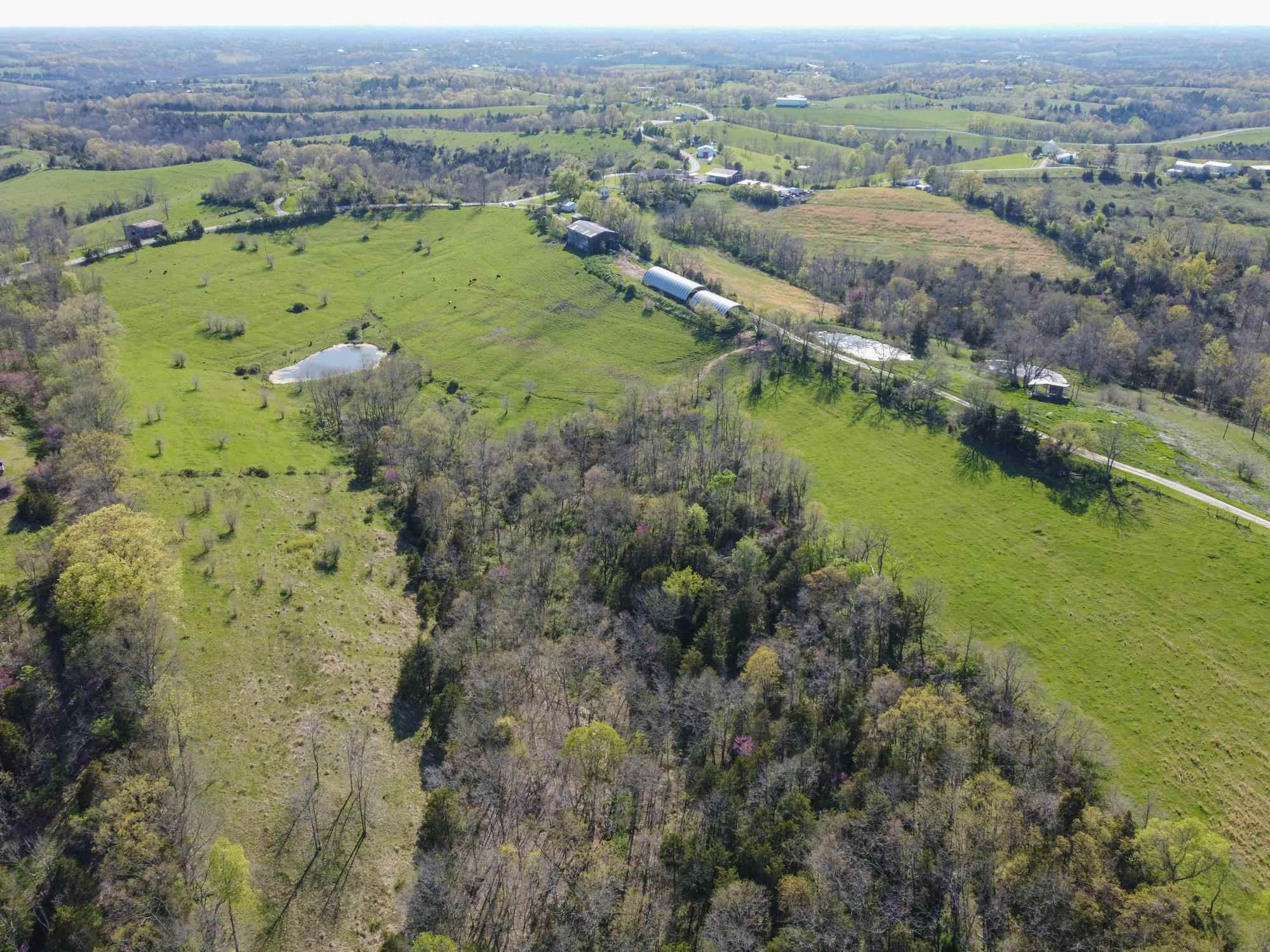 Photo 1 for 0 Keefer Road - 214.8 Acres Corinth, KY 41010