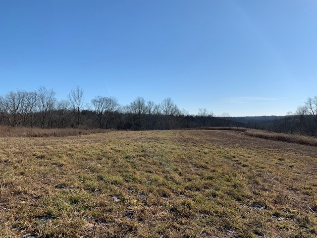 2285 Greenup Rd (85.8 acres)
