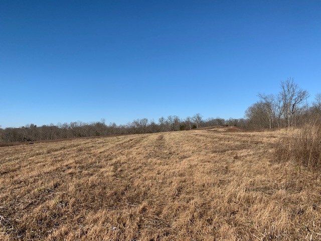 Photo 2 for 2285 Greenup Rd (85.8 acres) Owenton, KY 40359